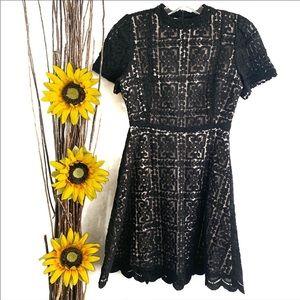 BB Dakota Adelina Lace Fit & Flare Dress Black